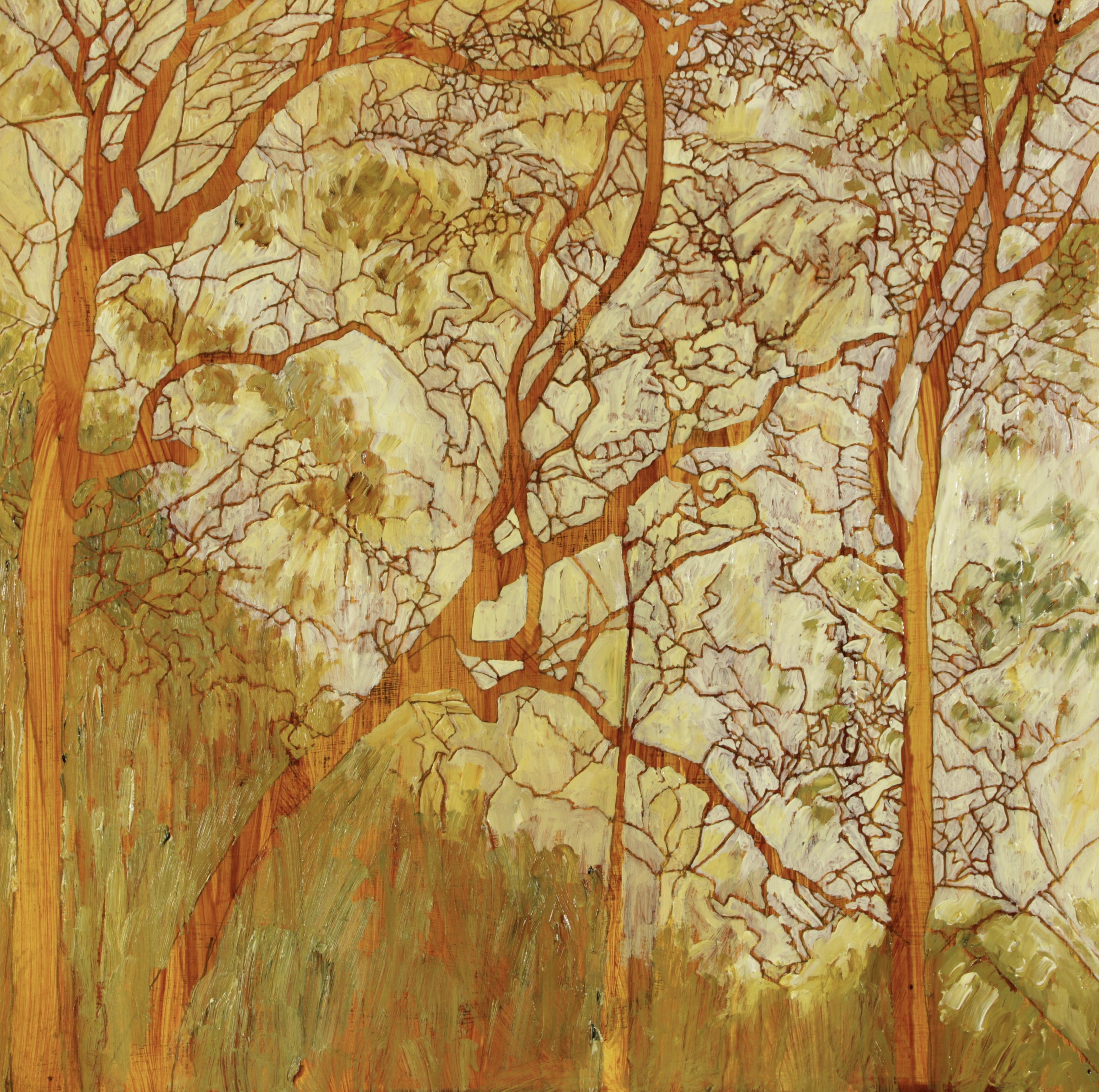 Hillside, Watagans, 30 x 30 cm