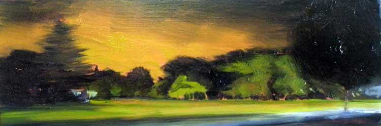 Sawtell Oval I, 2009