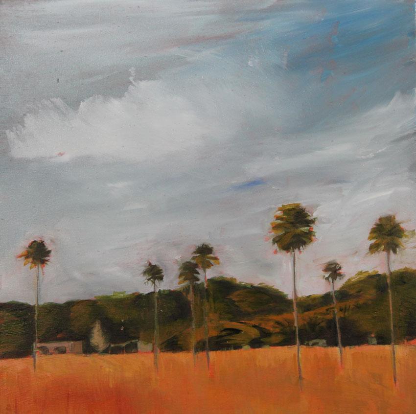 Bobs Farm Palms I