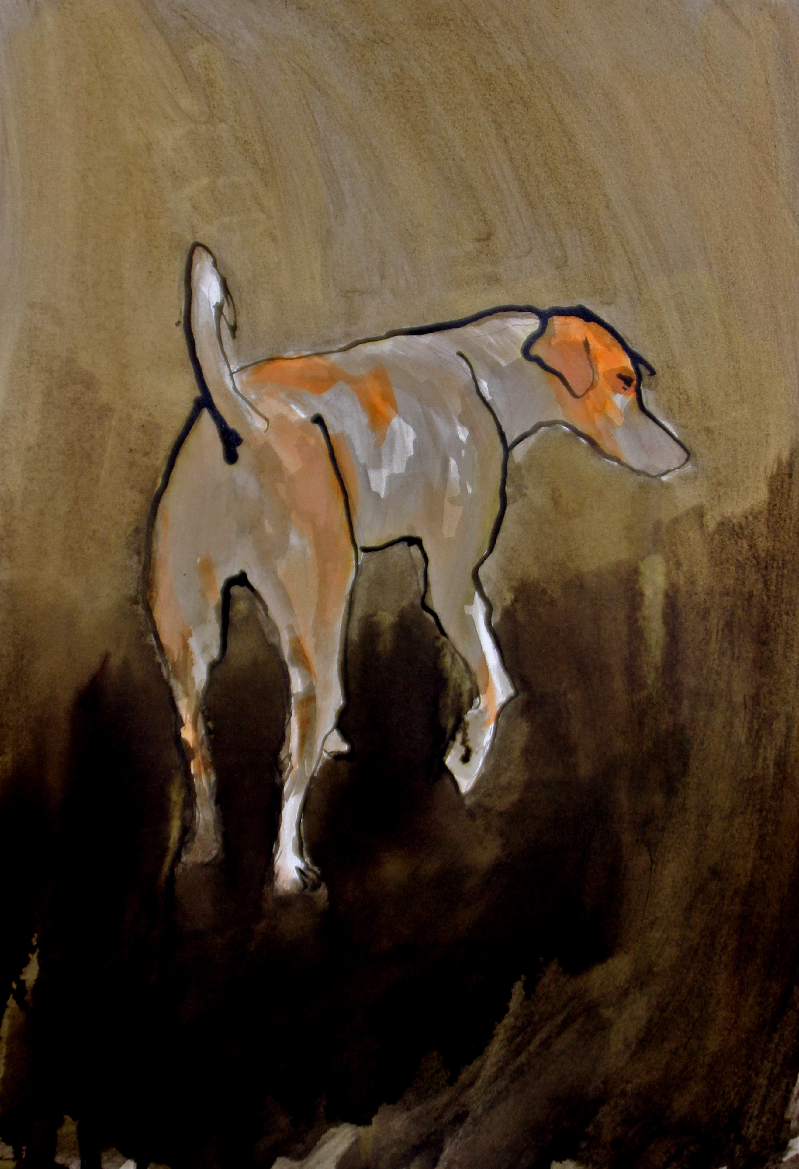 Jack Russell - Vence, 2015