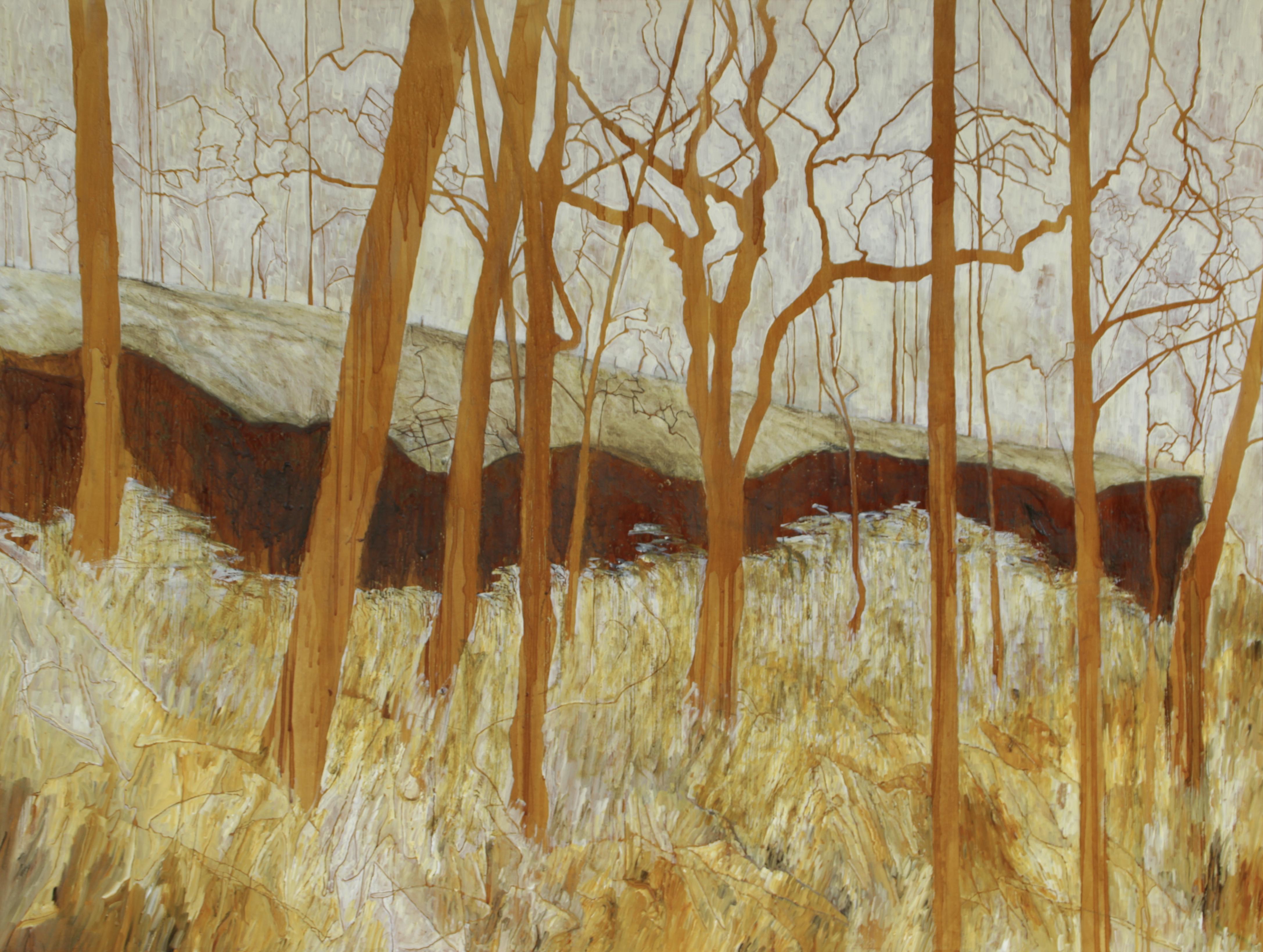 Sandstone cave, Watagans, 90 x 120 cm