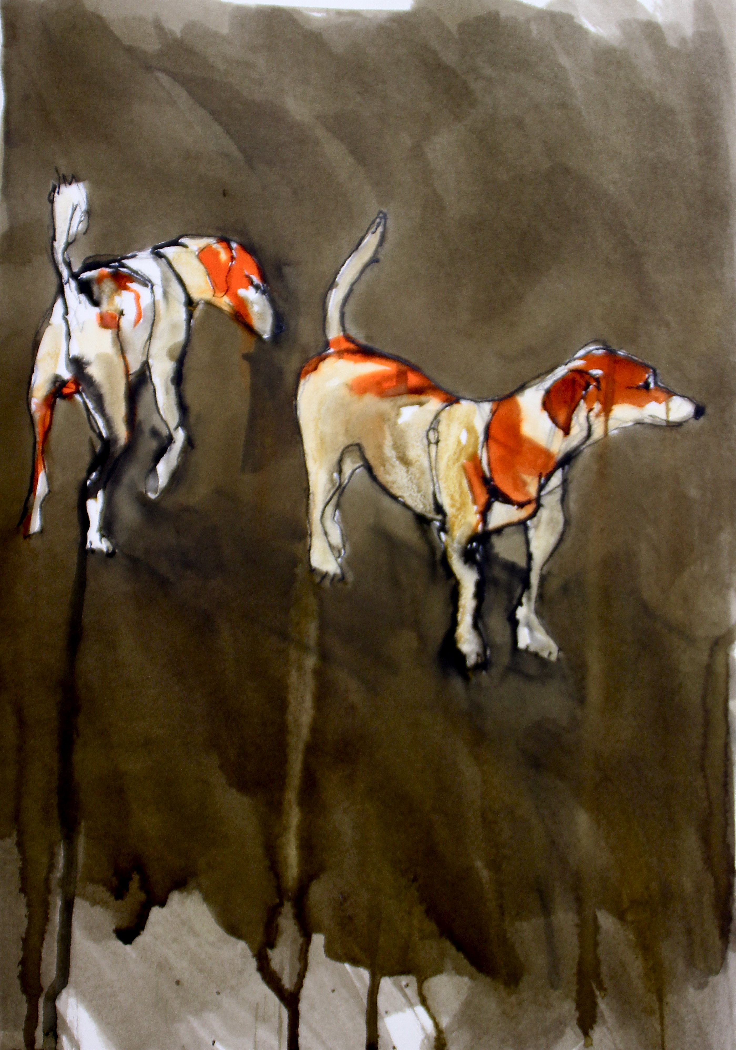 Two Jack Russells - Vence #1