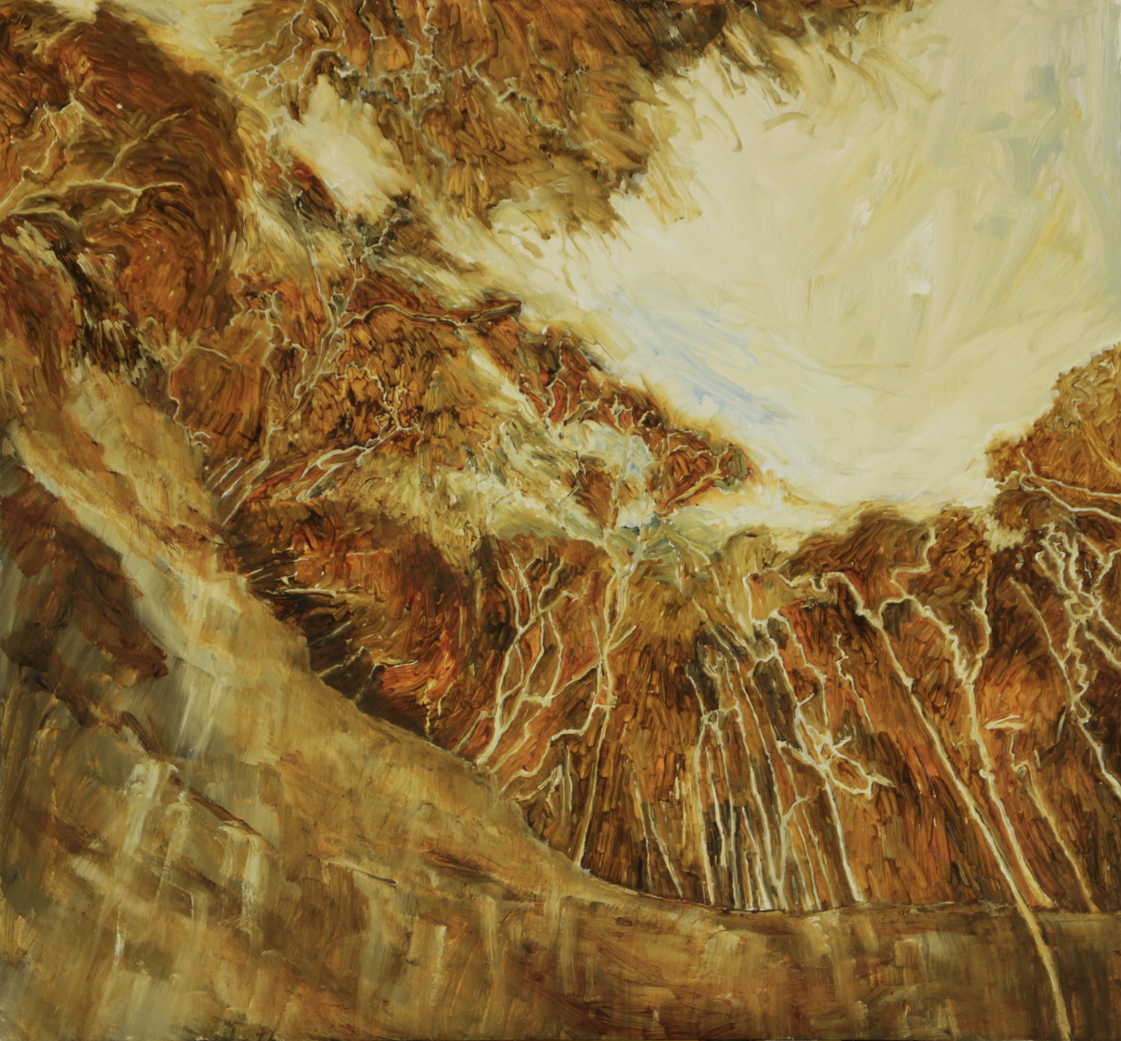 Gap Creek Falls ampitheatre, Watagans, 65 x 70 cm