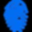 digital fingerprint of query image