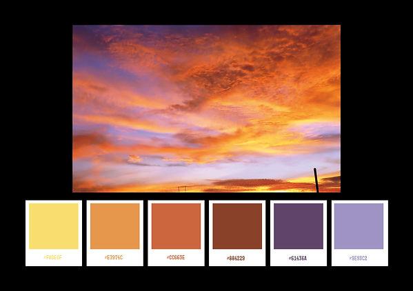 colour palettes22.jpg