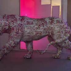 Mapping Christian Dior Tiger