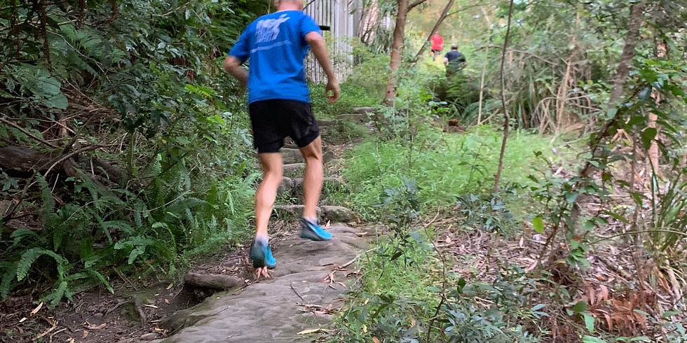 Blue Mountains Training Run - Wentworth Falls