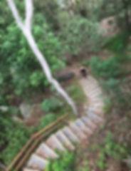 Trails blackman.jpg