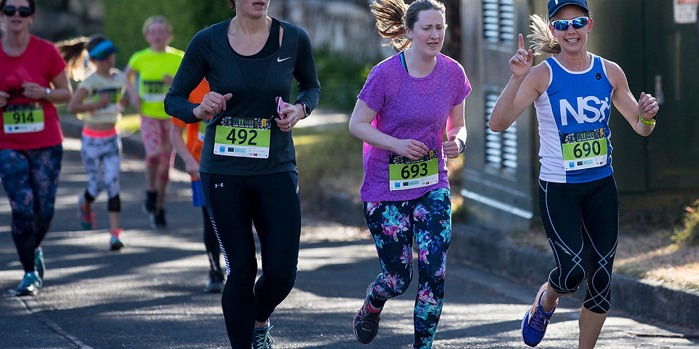 Hunter Valley Half Marathon Program