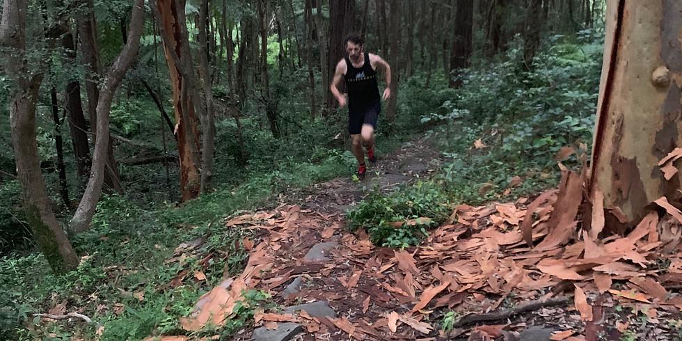 Friday Trail Run