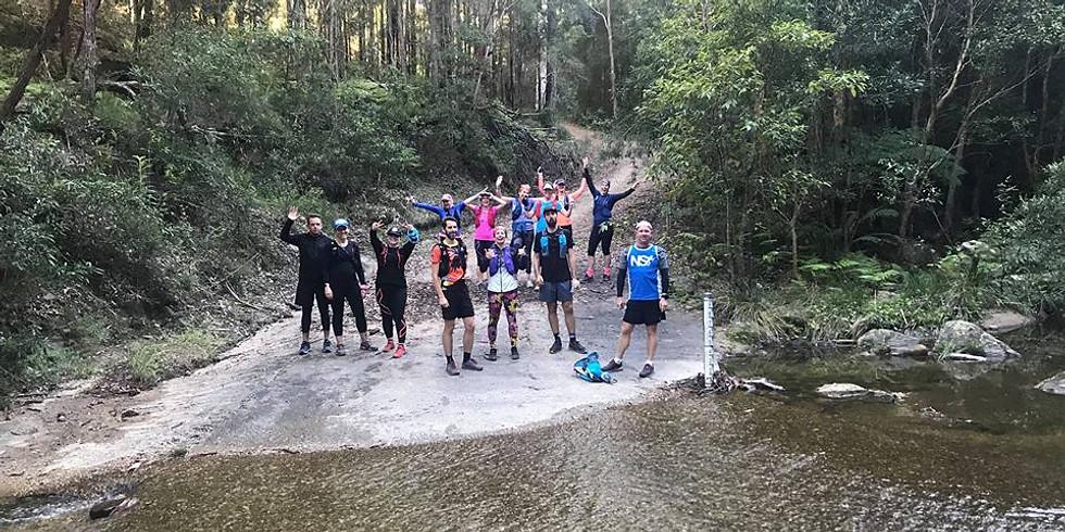 Blue Mountains Training Run - Katoomba