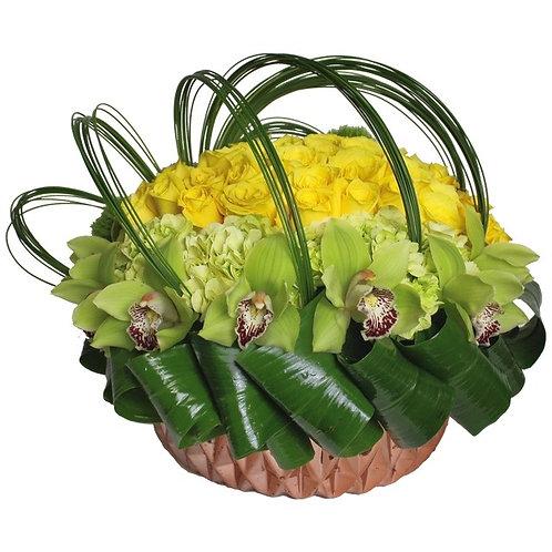 Joy Lux Blooms