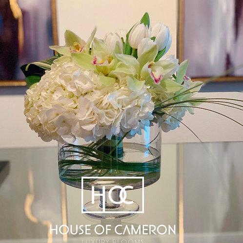HOC White Lux Designers Choice