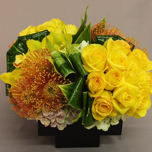 Sunburst Lux Blooms