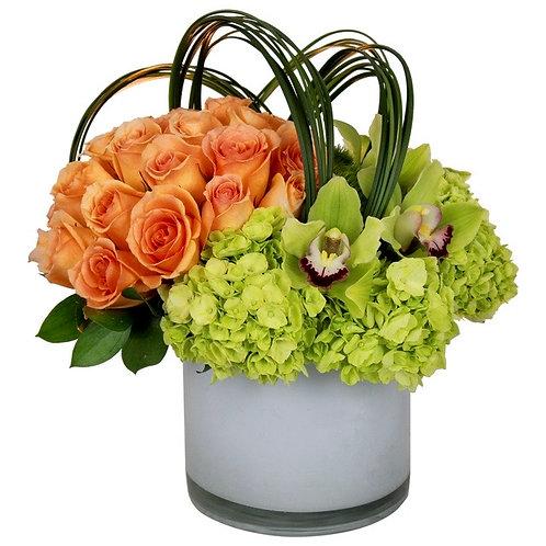 Zen Lux Blooms