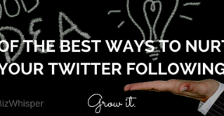 One of the Best Ways to Nurture Your Twitter Following
