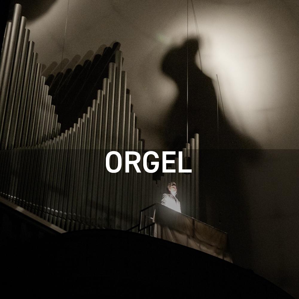07_Orgel