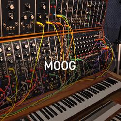 10_Moog