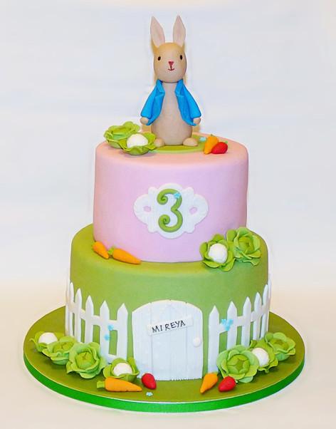 Mireya's Peter Rabbit cake