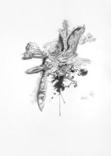 Apeecer | lápiz sobre papel