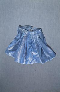 Falda   óleo sobre tela 60x90 cm 2013