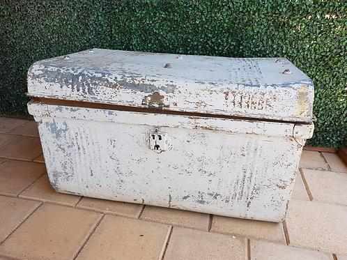 White trunk