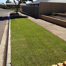 instant lawn