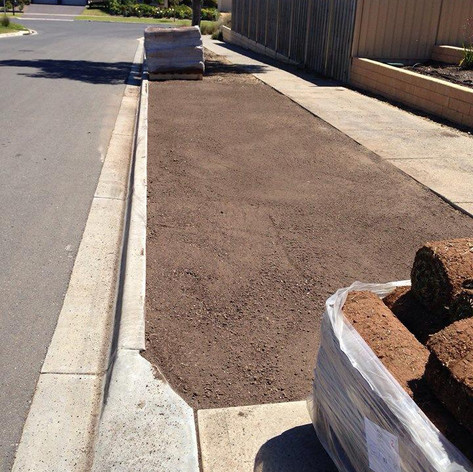 instant lawn prep