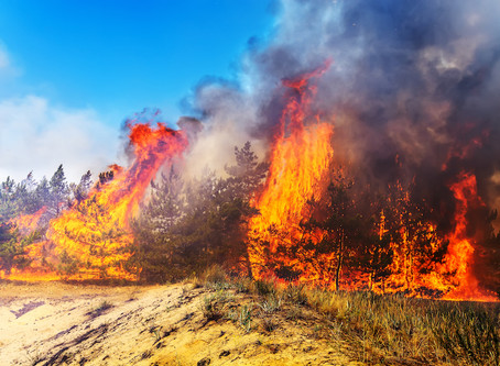 Summer fires and air quality at home