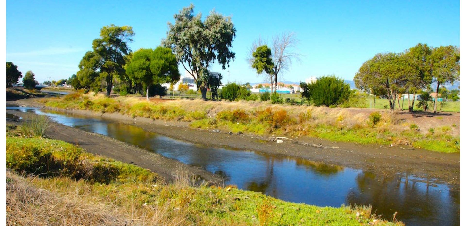 5 downstream.jpeg