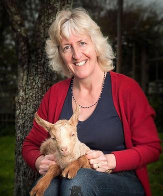 Guernsey Goat Farm.jpeg