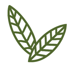 Double leaf.png