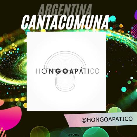 HONGO APATICO