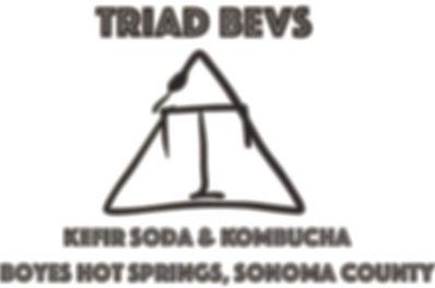 Sonoma Film Fest triad-logo.jpg