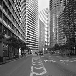 Shore San Francisco
