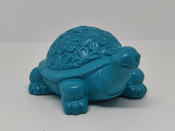 I'm not a turtle, Just a Toy
