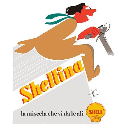 Shellina - Homepainter