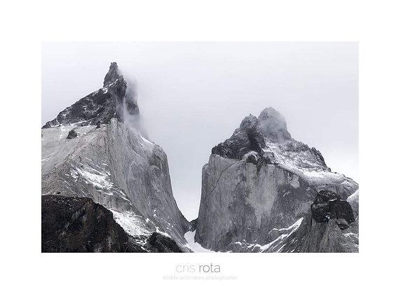 Art box ( Natura selvaggia) - Cristian Rota