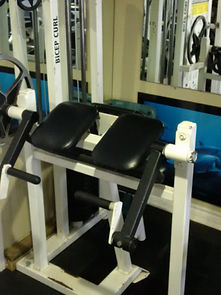 personal training, bicep curl machine in personal training studio