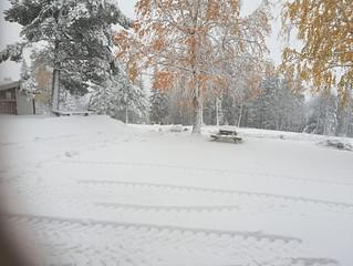 Første snøen!