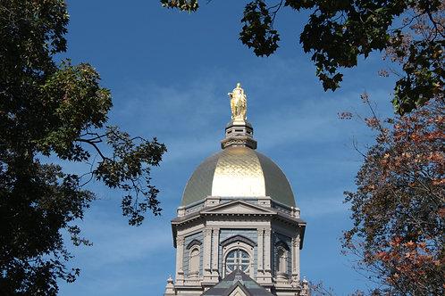 Notre Dame Golden Dome 16 x 20 Canvas Art