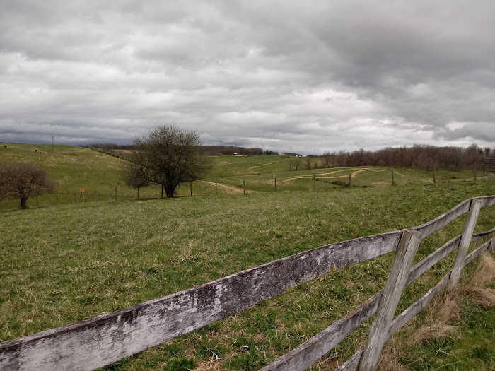The roundpen site