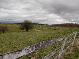 Site of the round pen