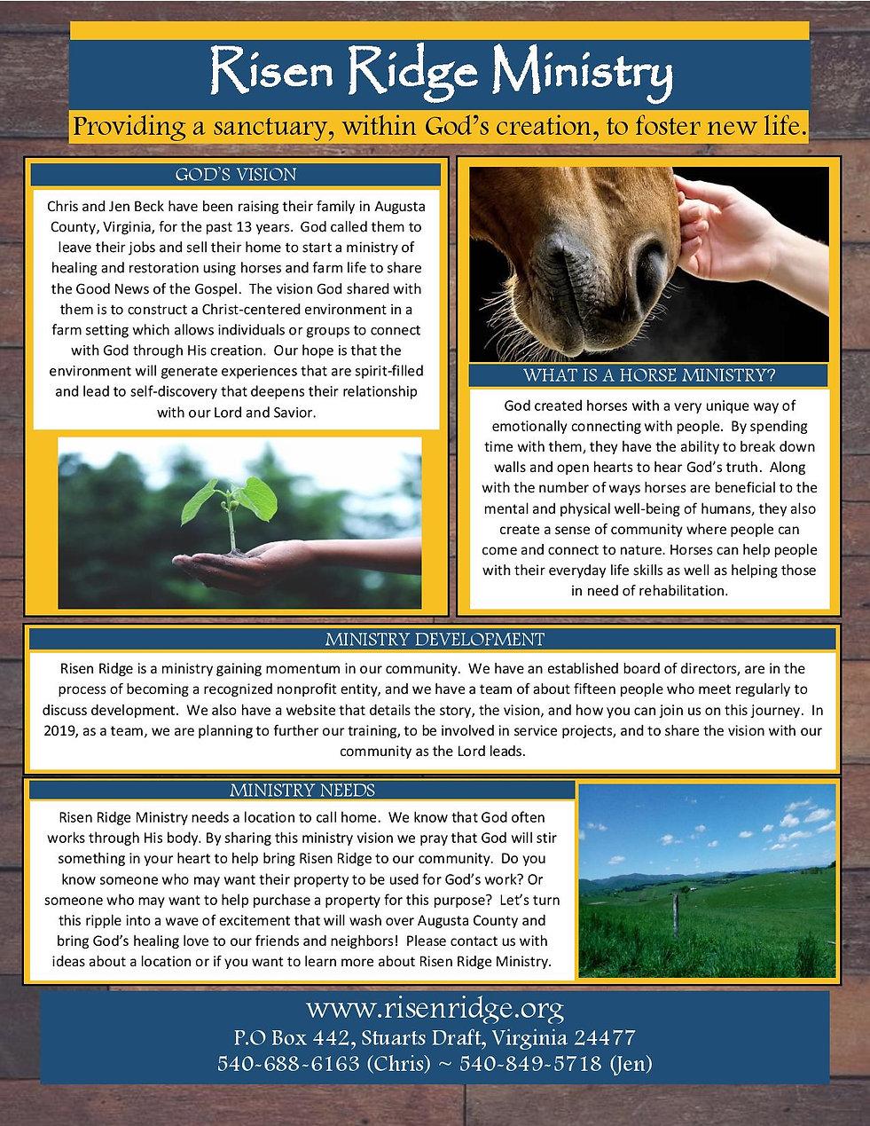 Vision Flyer take 2-page-001 (1).jpg
