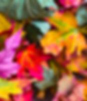 Intro3_edited.jpg