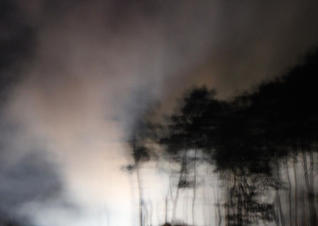 Firework Series (2) by Caitlin Whalley