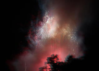 Firework Series (1) by Caitlin Whalley