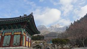 Running in South Korea