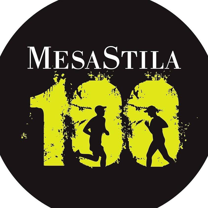 MESASTILA 100