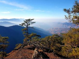 Race Report - Cordillera Mountain Ultra
